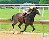 Facey Rumford winning at Delaware Park on 6/15/16