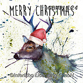 Simon, CHRISTMAS ANIMALS, WEIHNACHTEN TIERE, NAVIDAD ANIMALES, paintings+++++Card_KatherineW_SplatterChristmasStagSquare,GBWR124,#xa#,reindeer