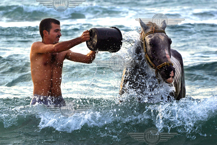 A Palestinian man washes his horse with a bucket on the coast of the Mediterranian sea..