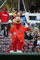 Inland Empire 66ers mascot Bernie entertains the fans during a game against the Modesto Nuts at San Manuel Stadium on May 20, 2016 in San Bernardino, California. Inland Empire defeated Modesto, 4-2. (Larry Goren/Four Seam Images)