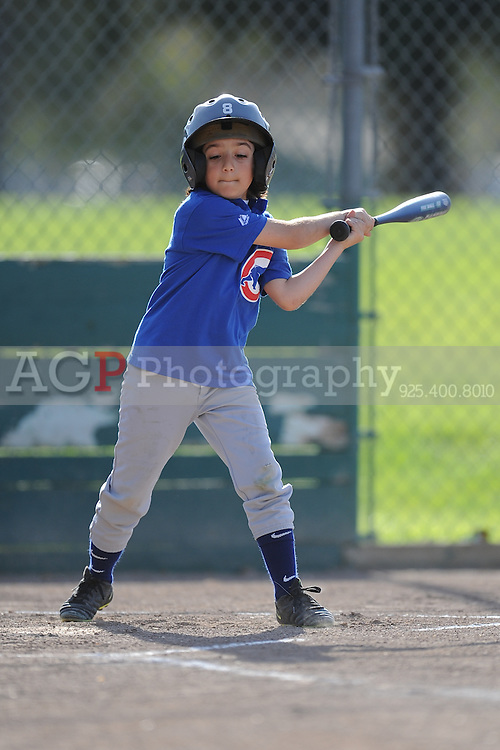 The A Cubs of Pleasanton National Little League  March 28, 2009.