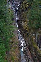 Gorge Creek, North Cascades National Park, Washington, US