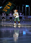 22 November 2011: University of Vermont Catamount mascot Rally Cat waves the UVM flag just prior to player introductions at a game against the University of Massachusetts Minutemen at Gutterson Fieldhouse in Burlington, Vermont. The Catamounts defeated the Minutemen 2-1 in their annual pre-Thanksgiving meeting of the Hockey East season. Mandatory Credit: Ed Wolfstein Photo