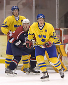 Erik Andersson (Anton Stralman, Shawn Weller)  The US Blue team lost to Sweden 3-2 in a shootout as part of the 2005 Summer Hockey Challenge at the National Junior (U-20) Evaluation Camp in the 1980 rink at Lake Placid, NY on Saturday, August 13, 2005.