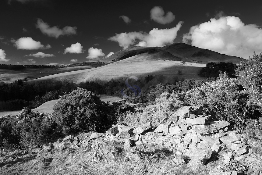 Turnhouse Hill from the Glencorse Viewpoint Walk, The Pentland Hills Regional Park, Lothian