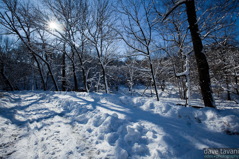 Snow blankets the banks of the Monoshone Creek as it flows through the Wissahickon Valley Park in Philadelphia, on February 11, 2010, after a record blizzard dropped 28.5 inches of snow on the city, making the 2009-2010 winter the snowiest on record since 1884.