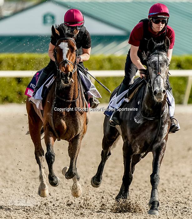 January 24, 2020: Magic Wand (left) gallops as horses prepare for the Pegasus World Cup Invitational at Gulfstream Park Race Track in Hallandale Beach, Florida. Scott Serio/Eclipse Sportswire/CSM