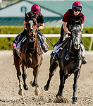 January 24, 2020: Magic Wand (left) gallops as horses prepare for the Pegasus World Cup Invitational at Gulfstream Park Race Track in Hallandale Beach, Florida. Scott Serio/Eclipse Sportswire/CSM