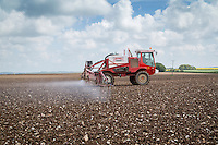 Spraying sugar beet with herbicide - Lincolnshire Wolds, May
