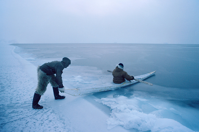 Inuit hunters use a kayak to retrieve a seal shot at the floe edge in winter. Thule, Northwest Greenland.