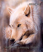 Sandi, REALISTIC ANIMALS, REALISTISCHE TIERE, ANIMALES REALISTICOS, paintings+++++dreamscapewolf,USSN45,#a#, EVERYDAY ,wolf,wolves ,puzzles