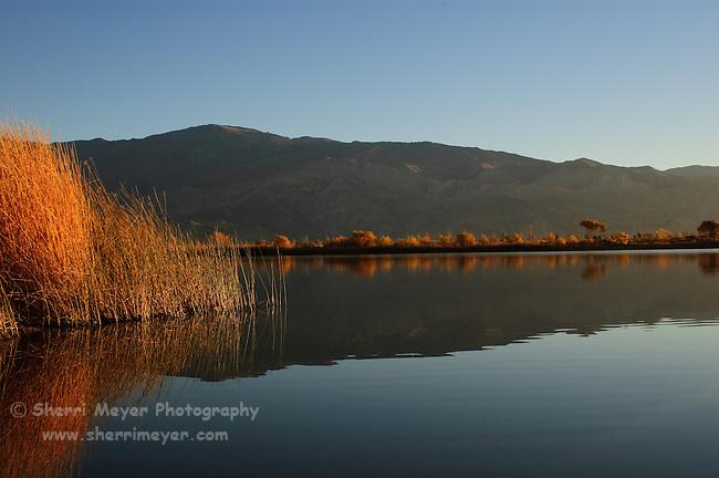 Diaz Lake, Lone Pine, California