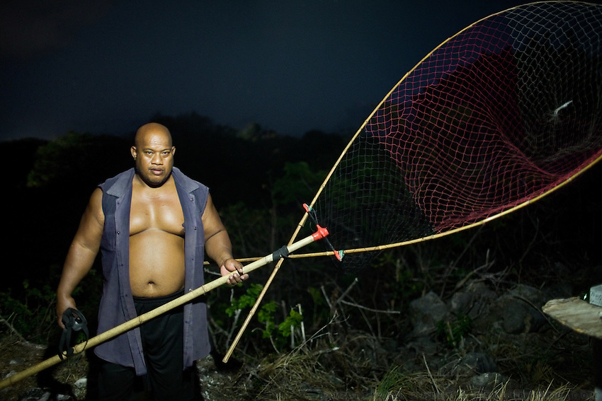 Gerard Jones, Nauru's weightlifting trainer (age 47, super class, 143 kg) hunting Noddy birds. Recording of a Noddy bird distress call is played. Noddy birds, coming back from foraging at sea, hear the call and then usually swoop down. The hunter catches them in a large net and then kill the birds by biting down on their necks. The birds, a local delicacy, are later cooked and eaten or sold 1 US$/bird, a way to compliment an income...Nauru, officially the Republic of Nauru is an island nation in Micronesia in the South Pacific.  Nauru was declared independent in 1968 and it is the world's smallest independent republic, covering just 21 square kilometers..Nauru is a phosphate rock island and its economy depends almost entirely on the phosphate deposits that originate from the droppings of sea birds. Following its exploitation it briefly boasted the highest per-capita income enjoyed by any sovereign state in the world during the late 1960s and early 1970s..In the 1990s, when the phosphate reserves were partly exhausted the government resorted to unusual measures. Nauru briefly became a tax haven and illegal money laundering centre. From 2001 to 2008, it accepted aid from the Australian government in exchange for housing a Nauru detention centre, with refugees from various countries including Afghanistan and Iraq..Most necessities are imported on the island..Nauru has parliamentary system of government. It had 17 changes of administration between 1989 and 2003. In December 2007, former weight lifting medallist Marcus Stephen became the President.