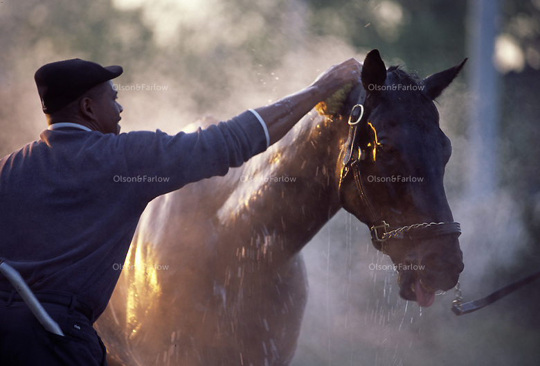 Steam rises from a horse being cooled down after an early morning workout at Churchill Downs.