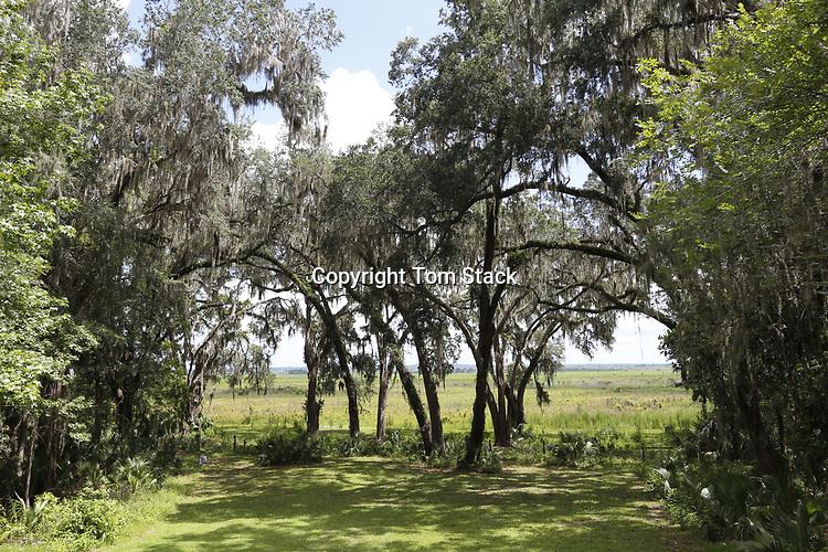 Paynes Prairie Preserve State Park, FL