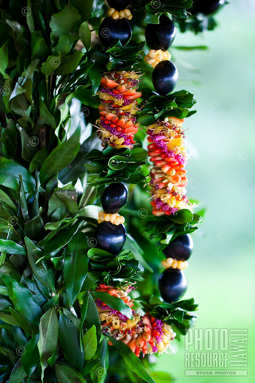 Cigar lei and maile lei hanging on an ironwood tree