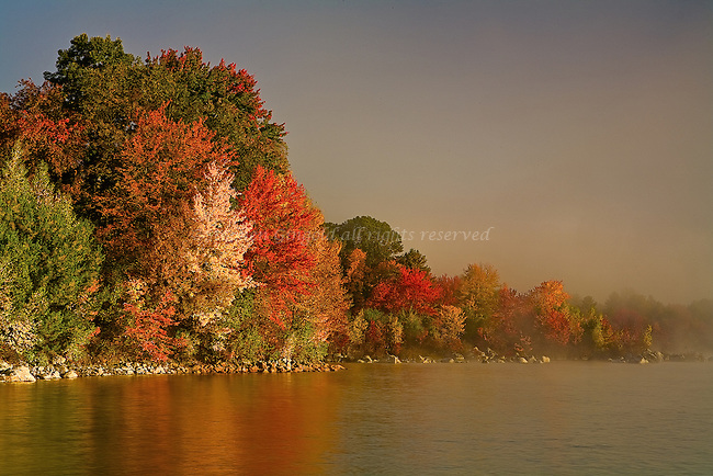 Bright vivid foliage along the shore of the Quabbin Reservoir in Ware, Masachusetts.