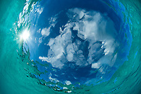 Water and sky<br /> looking up through clear Caribbean water<br /> St. John<br /> US Virgin Islands