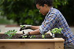 Urban Edible Farm Company