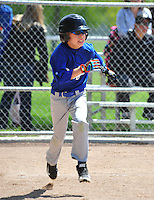 PNLL AAA Dodgers Action 2015. (Photo by AGP Photography)