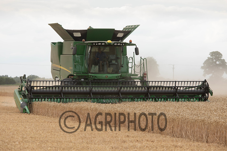24.7.2020 Harvesting Wheat in South Lincolnshire <br /> ©Tim Scrivener Photographer 07850 303986<br />      ....Covering Agriculture In The UK.