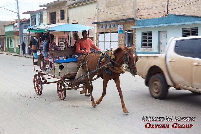 Horse & Buggie Taxi