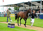 30th August 2017. Caroline Powell (NZL) riding Spice Sensation during the First Horse Inspection of the 2017 Burghley Horse Trials, Stamford, United Kingdom. Jonathan Clarke/JPC Images