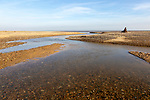 Benacre national nature reserve, North Sea coast, Suffolk, England, UK