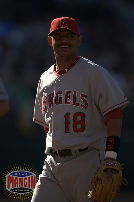 Orlando Cabrera. Baseball: Los Angeles Angels of Anaheim vs Oakland Athletics at McAfee Coliseum in Oakland, CA on July 8, 2006. Photo by Brad Mangin