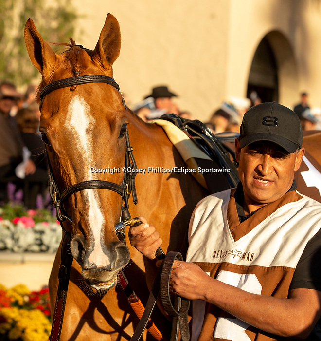 December 2 2018:  #13 Uni, enters the paddock before the Matriarch Stakes (Grade l), on December 2, 2018, at Del Mar Thoroughbred Club in Del Mar, CA(Photo by Casey Phillips/Eclipse Sportswire/CSM