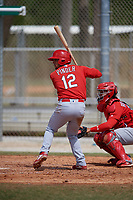 St. Louis Cardinals Chase Pinder (12) during a Minor League Spring Training Intrasquad game on March 28, 2019 at the Roger Dean Stadium Complex in Jupiter, Florida.  (Mike Janes/Four Seam Images)