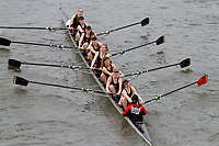 Crew: 306 Cardiff University Boat Club C<br /> <br /> Women's Head of the River (WeHoRR) 2017<br /> <br /> To purchase this photo, or to see pricing information for Prints and Downloads, click the blue 'Add to Cart' button at the top-right of the page.