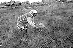 Popula&ccedil;&otilde;es Tradicionais de apanhadores de flores Sempre Vivas situadas na Serra do Espinha&ccedil;o em Diamantina, Minas Gerais.<br /> Popula&ccedil;&otilde;es atingidas pela implanta&ccedil;&atilde;o do Parque Nacional das Sempre Vivas, Parques Estaduais e Unidades de Conserva&ccedil;&atilde;o.<br /> Lorico Lot&eacute;rio, 57 anos, Dona Jovita Maria Gomes Correia,  56 anos ,  na regi&atilde;o do Cov&atilde;o na comunidade quilombola e de apanhadores de flores sempre-viva Mata dos Crioulos, localizada na Serra do Espinha&ccedil;o, em Diamantina, Minas Gerais.<br /> Chapada do Espinha&ccedil;o, fronteira com o Parque Estadual do Rio Preto entre Couto Magalh&atilde;es e Diamantina