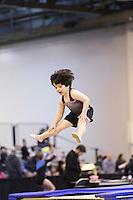 Gymnast Factory HNI 2016