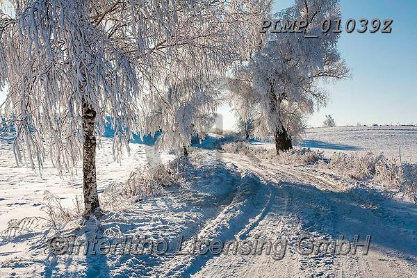 Marek, CHRISTMAS LANDSCAPES, WEIHNACHTEN WINTERLANDSCHAFTEN, NAVIDAD PAISAJES DE INVIERNO, photos+++++,PLMP01039Z,#xl#
