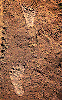The soil in northern Laos is very fine and dry during the dry season, highlighting the footprints of bare footed locals.<br /> (Photo by Matt Considine - Images of Asia Collection)