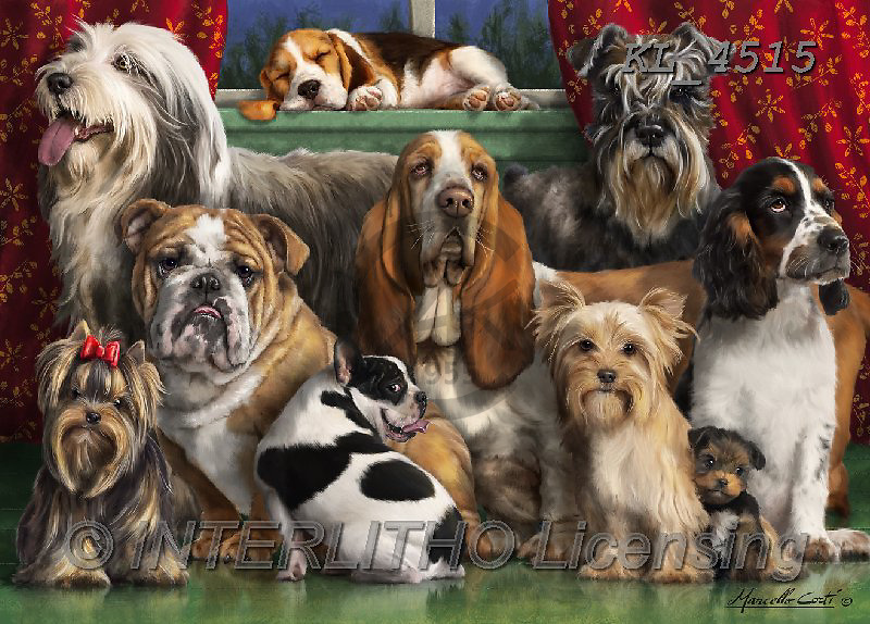 Animals - realistic  paintings