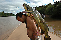 Fisherman carries a pintado ( Pseudoplatystoma corruscans, the Spotted sorubim - a species of long-whiskered catfish ), in Pantanal Matogrossense, Brazil.
