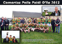 "26-2-2012: Mary Earley presents her husbands memorial cup ( the Dermot Earley cup ) to winning captain Tomny Costello of Tuam All-Stars in Gallarus, Dingle on Sunday. Also in picture is Paidi O""Se, tournament organieser..Picture by Don MacMonagle"