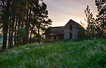 Idaho, North Central, Moscow, Viola. An abandoned farmhouse on the Palouse region of Idaho in spring.