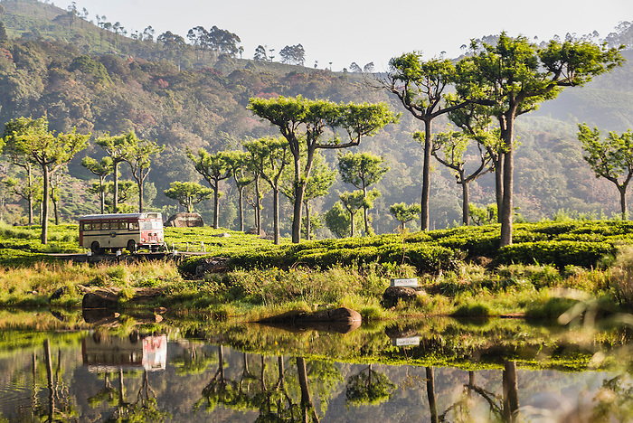 Haputale, reflections of a public bus in a lake in the Nuwara Eliya District, Sri Lanka Hill Country, Asia. This is a photo of public bus reflections in a beautiful lake at Haputale in the Nuwara Eliya District of the Sri Lanka Hill Country, Asia.