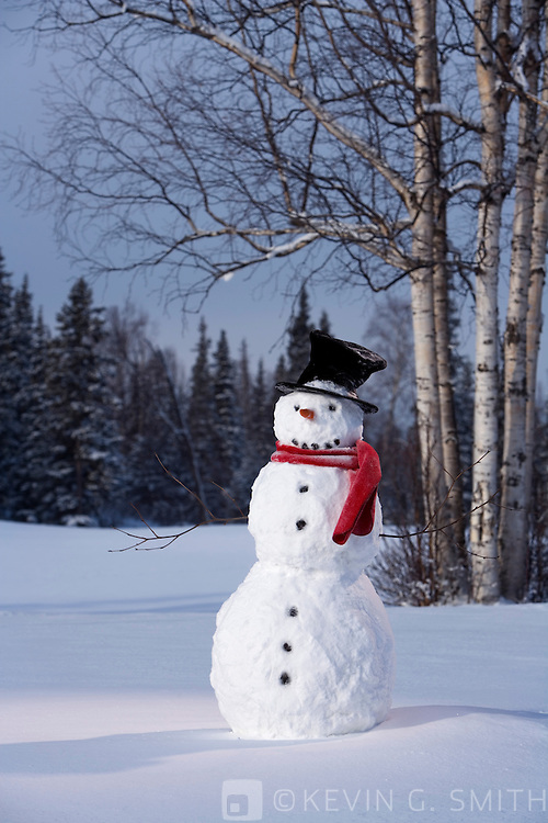 Snowman with red scarf and black top hat standing in snowy meadow, birch trees and spruce forest in back ground.