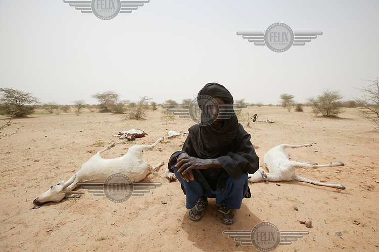 Oussenyi Moussa lost most of his herd of goats and cattle, which had been weakened by drought and were then wiped out by a catastrophic flood. Lack of rain, locusts and an inadequate international response led to a food crisis, with up to three million people in need of aid.