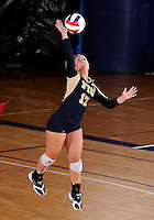 Florida International University women's volleyball player Carolyn Fouts (17) plays against Florida A&M University.  FIU won the match 3-0 on September 11, 2011 at Miami, Florida. .