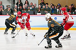 ADRIAN, MI - MARCH 18: Melissa Ames (24) of Plattsburgh State University skates with the puck during the Division III Women's Ice Hockey Championship held at Arrington Ice Arena on March 19, 2017 in Adrian, Michigan. Plattsburgh State defeated Adrian 4-3 in overtime to repeat as national champions for the fourth consecutive year. by Tony Ding/NCAA Photos via Getty Images)
