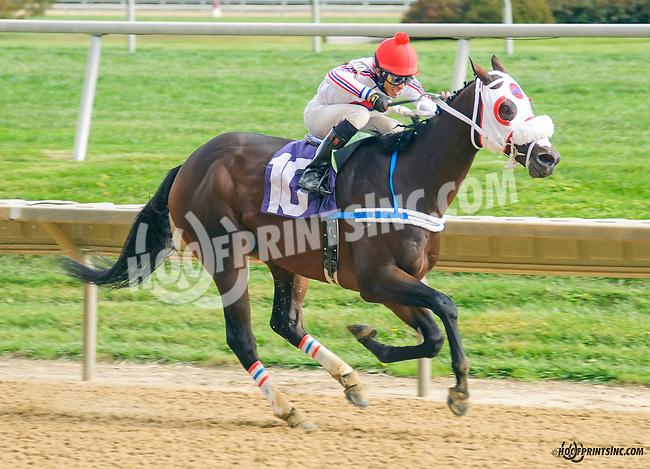 Big Zapple winning at Delaware Park on 10/17/15