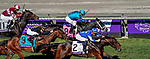 November 1, 2019 : Structor, ridden by Jose Ortiz, wins the Breeders' Cup Juvenile Turf on Breeders' Cup Championship Friday at Santa Anita Park in Arcadia, California on November 1, 2019. John Voorhees/Eclipse Sportswire/Breeders' Cup/CSM