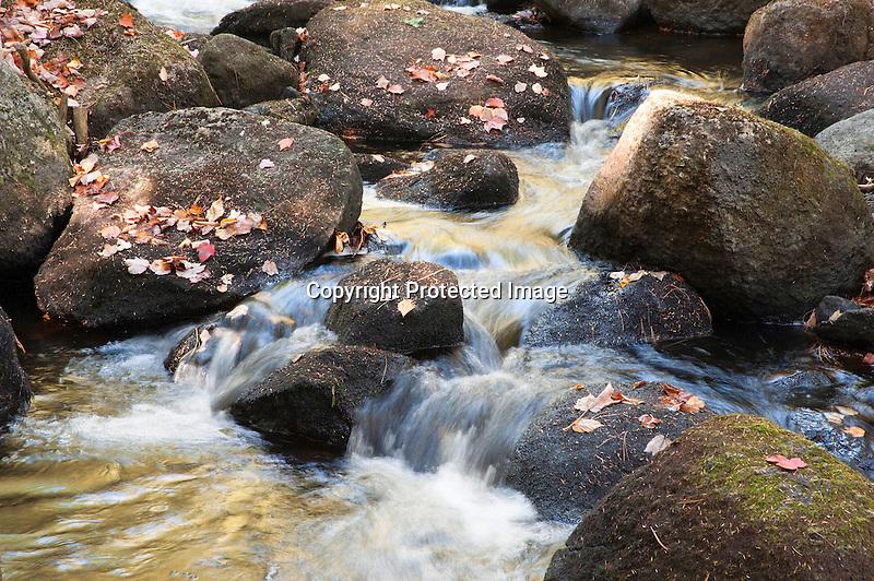 Bubbling Brush Brook