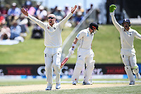 23rd November 2019; Mt Maunganui, New Zealand;  England's Jack Leach appeals usuccessfully for a LBW decision during play on Day 3, 1st Test match between New Zealand versus England. International Cricket at Bay Oval, Mt Maunganui, New Zealand.  - Editorial Use