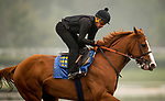 ARCADIA, CA - APRIL 01: Justify with Humberto Gomez up gallops in preparation for the Santa Anita Derby at Santa Anita Park on April 01, 2018 in Arcadia, California. (Photo by Alex Evers/Eclipse Sportswire/Getty Images)